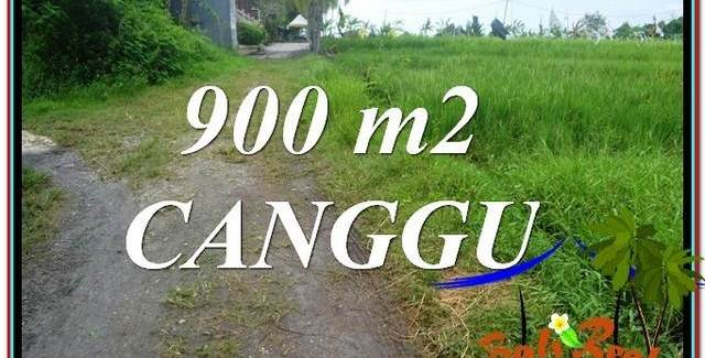 Exotic Canggu Batu Bolong  LAND FOR SALE TJCG215