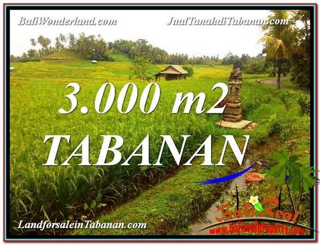 Affordable 3,000 m2 LAND FOR SALE IN TABANAN TJTB328