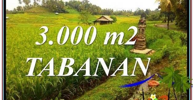 Exotic LAND FOR SALE IN TABANAN TJTB328