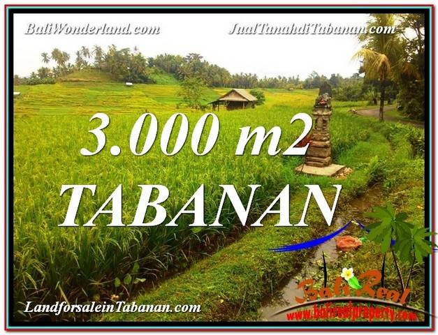 Affordable PROPERTY 3,000 m2 LAND SALE IN TABANAN TJTB328