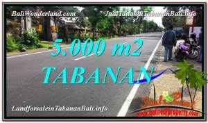 5,000 m2 LAND IN Badung BALI FOR SALE TJTB332