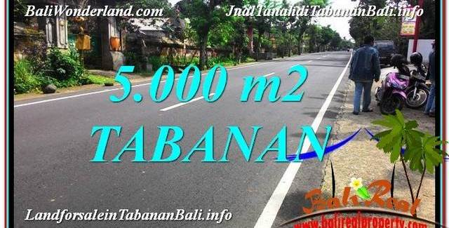 Exotic 5,000 m2 LAND FOR SALE IN Badung TJTB332