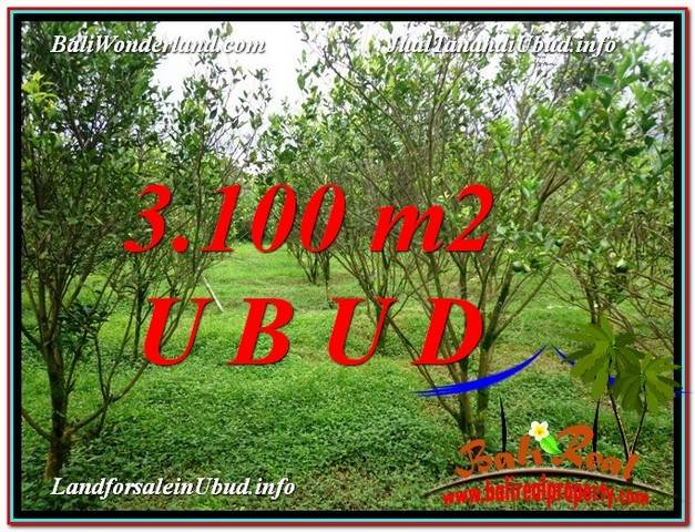 FOR SALE Magnificent PROPERTY LAND IN UBUD TJUB593