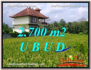 Exotic 2,700 m2 LAND SALE IN UBUD BALI TJUB595
