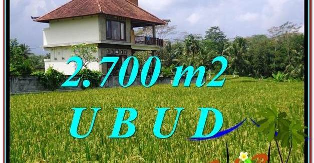 Beautiful PROPERTY LAND FOR SALE IN UBUD BALI TJUB595