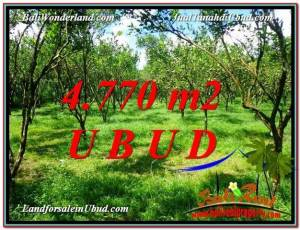 Magnificent 4,770 m2 LAND IN UBUD BALI FOR SALE TJUB598