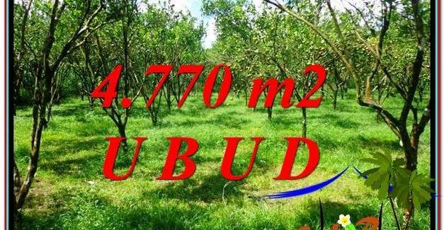 4,770 m2 LAND SALE IN UBUD TJUB598