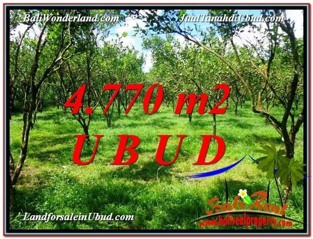4,770 m2 LAND SALE IN UBUD TJUB598