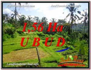 Exotic PROPERTY UBUD LAND FOR SALE TJUB601