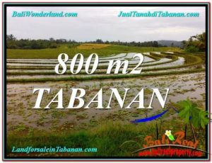 Magnificent LAND FOR SALE IN Tabanan Selemadeg BALI TJTB324