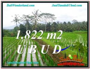 FOR SALE Magnificent PROPERTY 1,822 m2 LAND IN UBUD BALI TJUB574