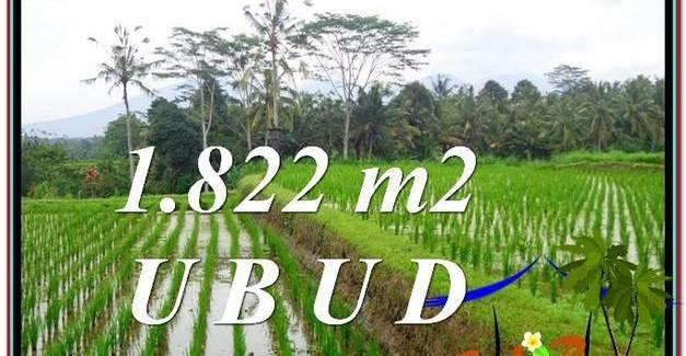Beautiful 1,822 m2 LAND IN UBUD BALI FOR SALE TJUB574