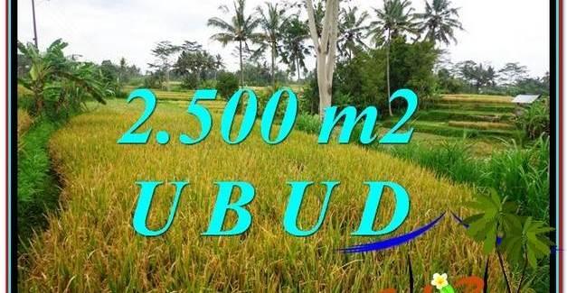 Exotic PROPERTY 2,500 m2 LAND IN Ubud Pejeng FOR SALE TJUB577
