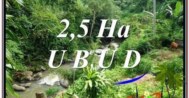 Magnificent PROPERTY Sentral Ubud 26,000 m2 LAND FOR SALE TJUB579