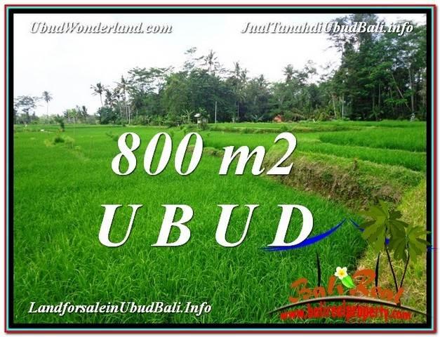 LAND SALE IN Ubud Pejeng BALI TJUB581