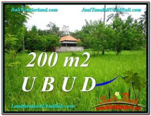 FOR SALE Beautiful LAND IN Sentral Ubud BALI TJUB584