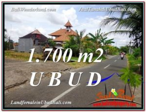 Magnificent PROPERTY LAND IN UBUD FOR SALE TJUB588