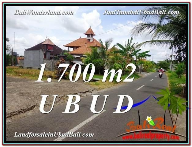 Magnificent LAND SALE IN Sentral Ubud BALI TJUB588