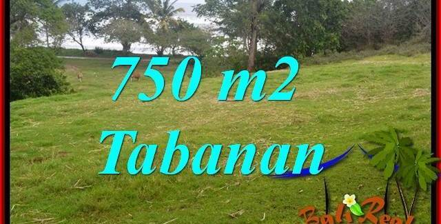 Affordable PROPERTY LAND FOR SALE IN Tabanan Selemadeg BALI TJTB346