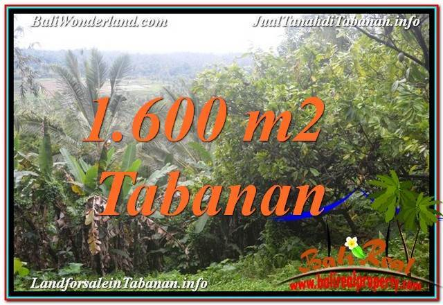 Affordable 1,600 m2 LAND IN TABANAN FOR SALE TJTB348