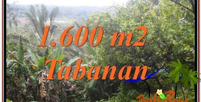 Beautiful 1,600 m2 LAND SALE IN TABANAN TJTB348