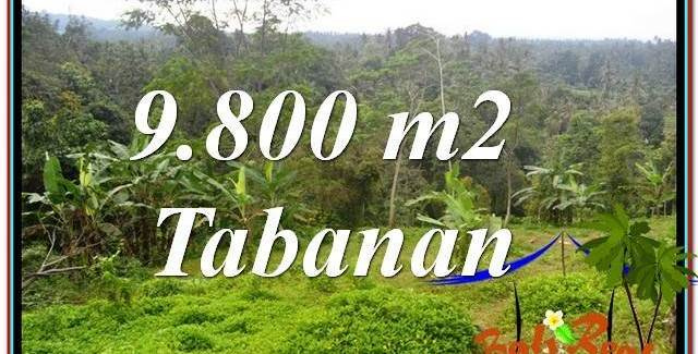 Beautiful 9,800 m2 LAND SALE IN TABANAN TJTB350
