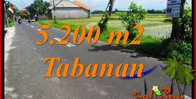 Beautiful PROPERTY Tabanan Kediri 5,200 m2 LAND FOR SALE TJTB351