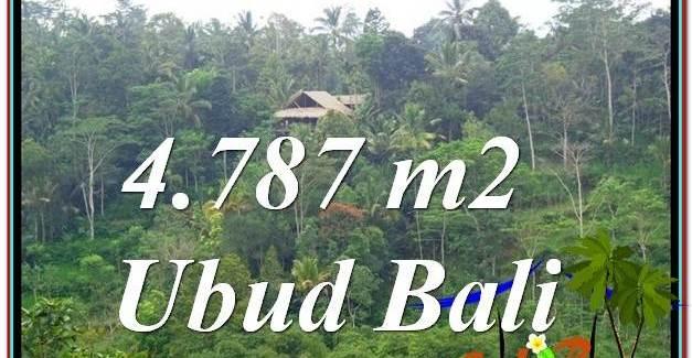 FOR SALE Exotic LAND IN Ubud Tampak Siring BALI TJUB603