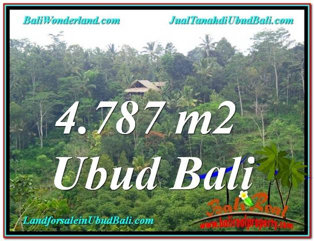 FOR SALE Exotic LAND IN Ubud Tampak Siring BALI TJUB603