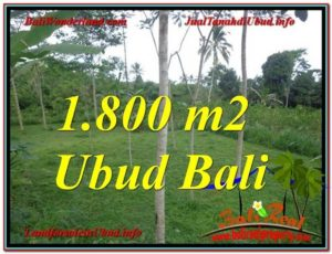 FOR SALE Beautiful PROPERTY 1,800 m2 LAND IN UBUD BALI TJUB610