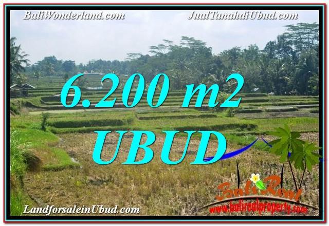 Beautiful PROPERTY 6,200 m2 LAND SALE IN Ubud Payangan TJUB631