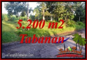 Exotic PROPERTY 5,200 m2 LAND SALE IN TABANAN TJTB334