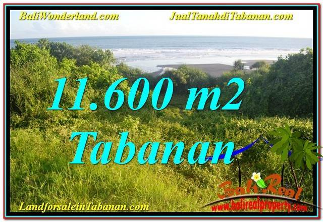FOR SALE 11,600 m2 LAND IN TABANAN BALI TJTB340