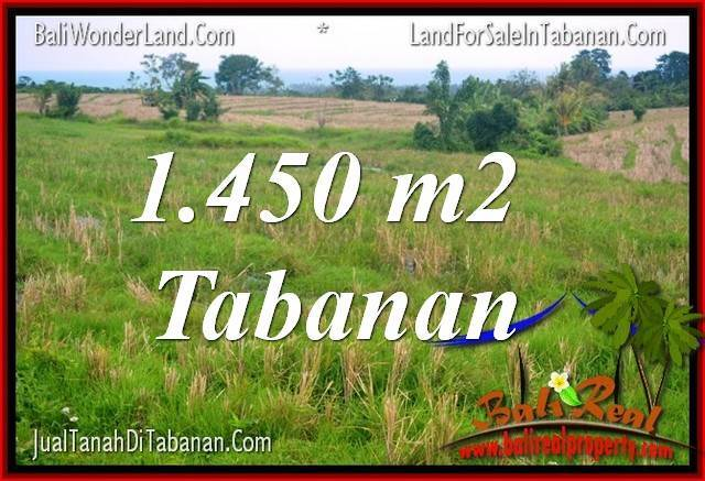 Affordable PROPERTY 1,450 m2 LAND FOR SALE IN TABANAN BALI TJTB343