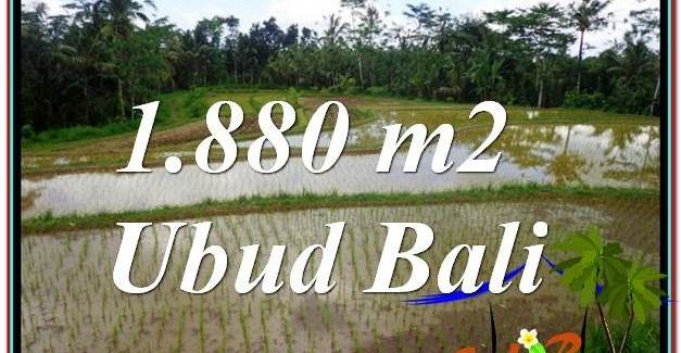 FOR SALE Beautiful PROPERTY LAND IN UBUD TJUB613