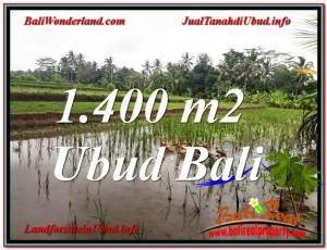 Magnificent 1,400 m2 LAND SALE IN UBUD BALI TJUB615