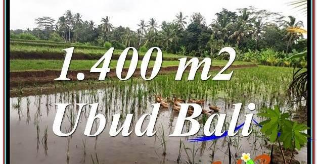 1,400 m2 LAND FOR SALE IN UBUD BALI TJUB615