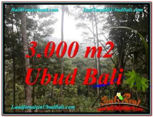FOR SALE Beautiful 3,000 m2 LAND IN UBUD BALI TJUB617