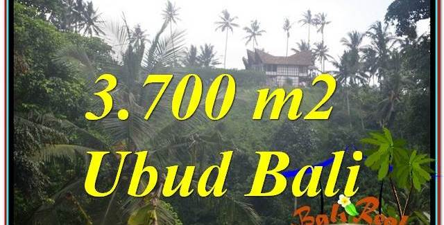 FOR SALE Affordable LAND IN UBUD BALI TJUB640
