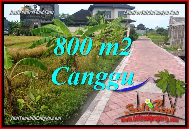 Affordable PROPERTY 800 m2 LAND IN Canggu Brawa BALI FOR SALE TJCG221
