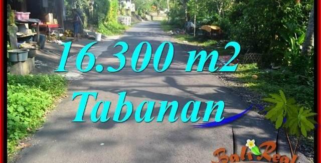 Magnificent PROPERTY Tabanan Selemadeg Barat BALI LAND FOR SALE TJTB361