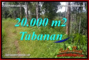 Beautiful PROPERTY Tabanan Selemadeg Timur BALI 20,000 m2 LAND FOR SALE TJTB365