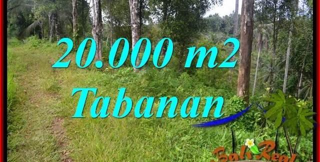 FOR SALE Affordable PROPERTY 20,000 m2 LAND IN Tabanan Selemadeg Timur TJTB365