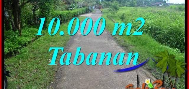 Affordable PROPERTY 10,000 m2 LAND FOR SALE IN Tabanan Selemadeg BALI TJTB354