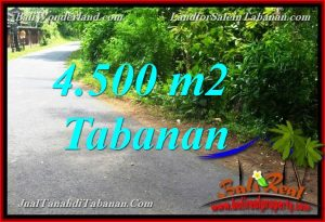 FOR SALE Affordable PROPERTY LAND IN TABANAN TJTB380