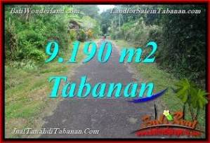 FOR SALE Exotic PROPERTY 9,190 m2 LAND IN Tabanan Selemadeg Timur BALI TJTB368