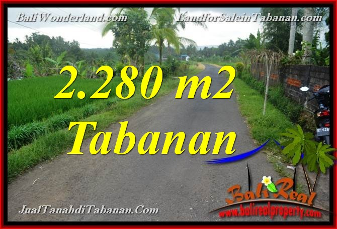 Exotic PROPERTY 2,280 m2 LAND IN Tabanan Selemadeg BALI FOR SALE TJTB374