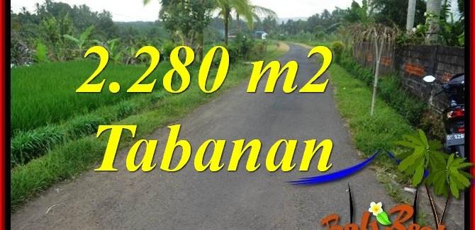 FOR SALE Beautiful LAND IN Tabanan Selemadeg TJTB374