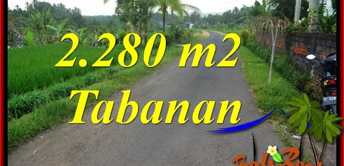 Exotic 2,280 m2 LAND SALE IN Tabanan Selemadeg BALI TJTB374
