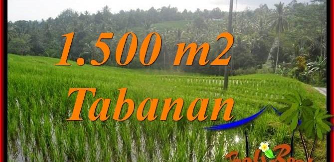 Magnificent TABANAN 1,500 m2 LAND FOR SALE TJTB375